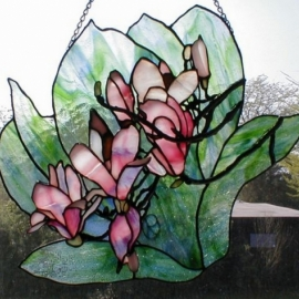 Magnolia #3